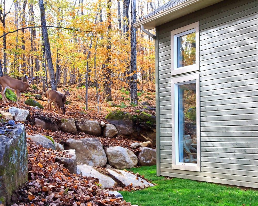 Fenêtre PVC - Maison neuve